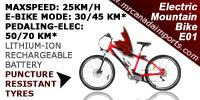 ORION Electric Bicycles