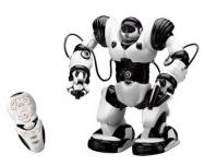 R/C Robots