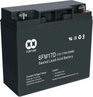 Electric Vehicle Series Sealed Lead Aicd Battery