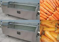 Carrot Washing Machine