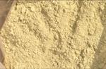 Carnosic acid-rosemary extract 5%-60%