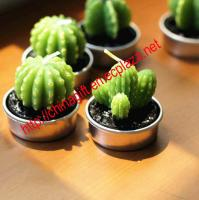 Cactus Shaped Candle Favor (Set of 6 Pieces)