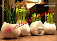 Led Green Plants Night Light