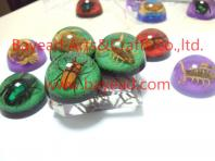 Real insect resin paperweights,so cool gift,business gift