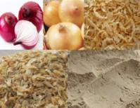 supply dry onion products